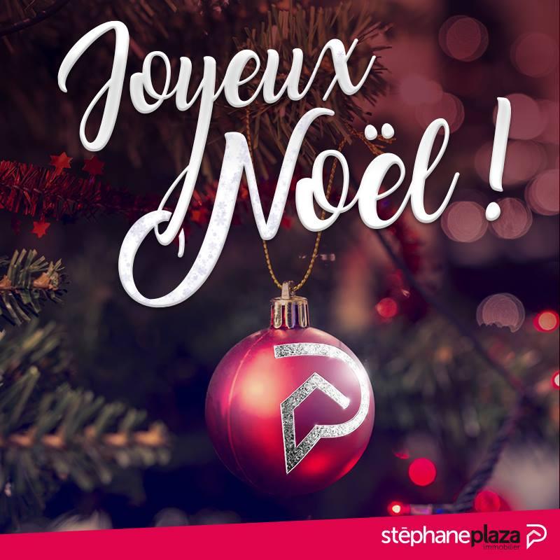 2. Stéphane Plaza : Joyeux Noël de la part de l'Agence Immobilière de Brive La Gaillarde